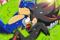 Sonadow on th grass 1