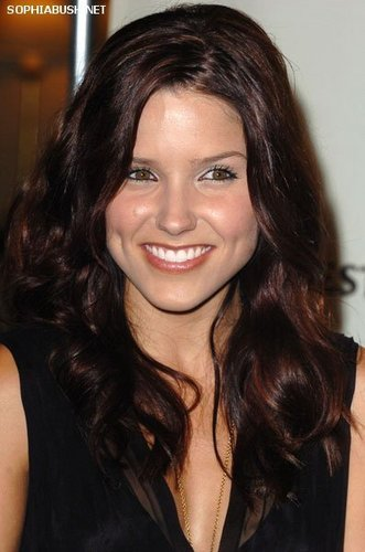 Sophia Bush at the 12th Annual Race to Erase MS