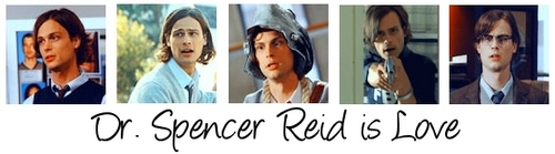 Spencer Reid is Love