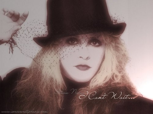 stevie nicks wallpaper probably with a fedora, a boater, and a castor called Stevie Nicks