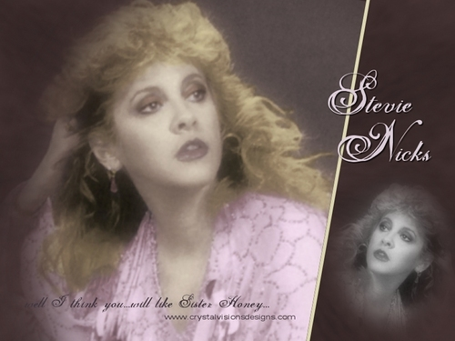 stevie nicks wallpaper with a portrait titled Stevie Nicks