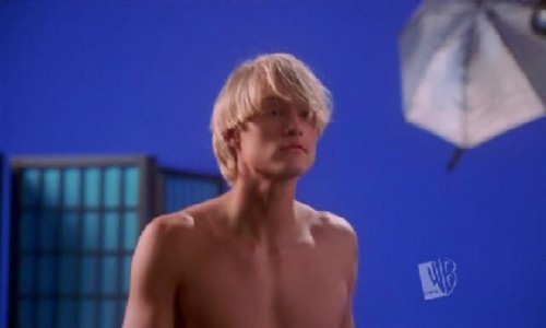 Toby Hemingway wallpaper with a hunk and skin entitled Toby Hemingway in summerland