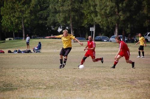 Toby playing ফুটবল