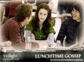 Twilight Trading Cards  - twilight-series photo