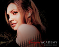 VA Wallpapers  - vampire-academy wallpaper