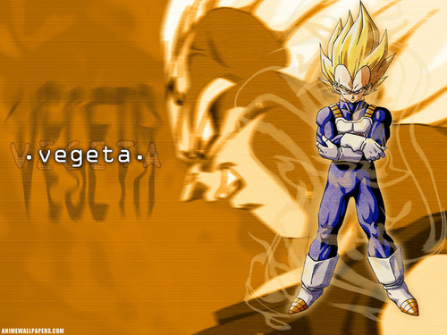Wallpapers! - dragon-ball-z Photo