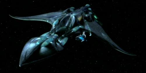 Xindi-Aquatic incrociatore - ST:ENT