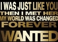 _WANTED_FAN_