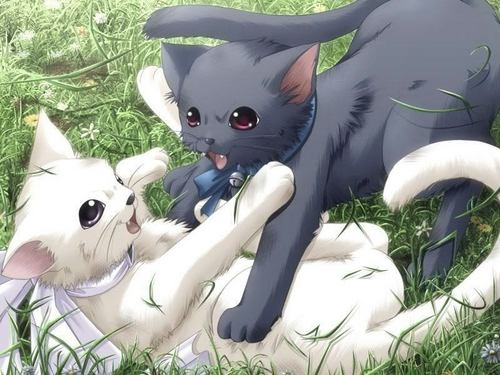 anime animal wallpaper titled kucing
