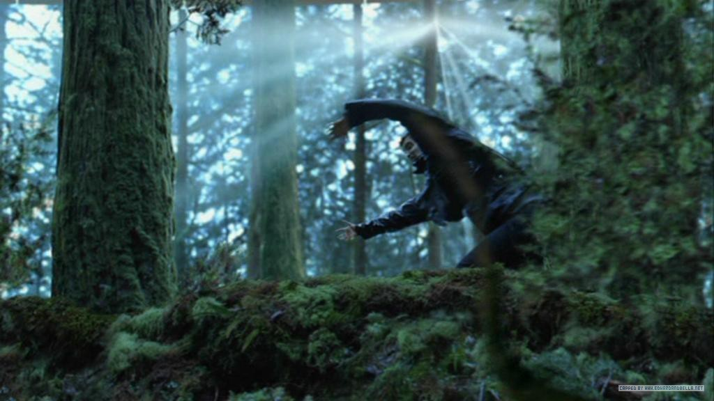 http://images2.fanpop.com/images/photos/6600000/hunting-twilight-series-6638962-1024-576.jpg