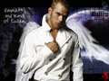 kellan lutz - twilight-guys fan art