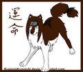 naruto wolves - anime fan art