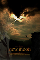 new_moon_awsome_poster - twilight-series photo