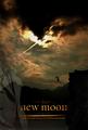 new_moon_awsome_poster - twilight-series photo