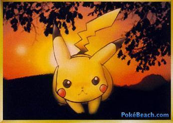 pokemon TCG scans