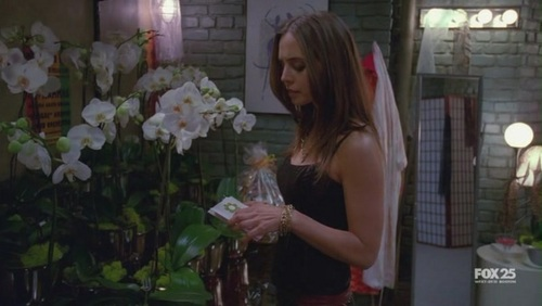 Dollhouse 壁紙 probably with a bouquet entitled 1x03-Stage Fright