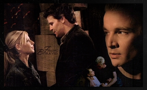 Buffy/Spike/Angel