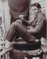 C. Thomas Howell as Ponyboy Curtis - the-outsiders photo