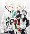 D-gray man - dgray-man photo