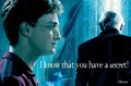 Drarry - harry-potters-women photo