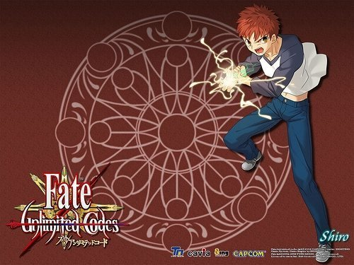Fate\unlimited codes hình nền