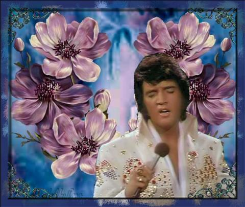 Elvis Presley Hintergrund with a bouquet, a hippeastrum, and a rose called Blumen