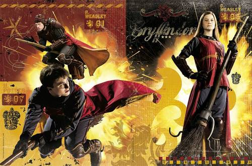 HBP Quidditch