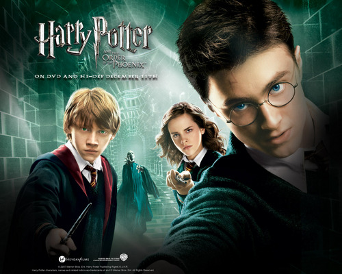 Harry Potter <3