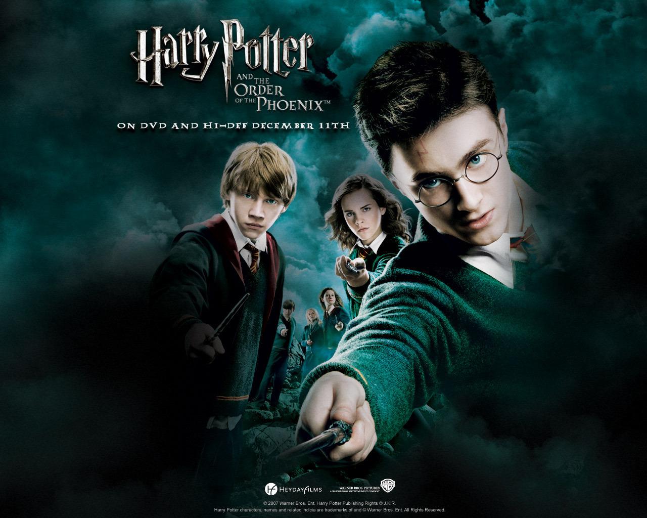Harry Potter WINS!!!
