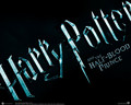 Harry Potter obsessor - harry-potter-vs-twilight wallpaper