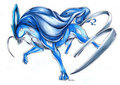 Suicune - water-type-pokemon photo