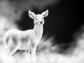 The Silver Doe Patronus