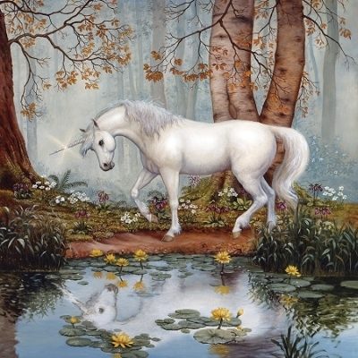 Unicorn's Reflection