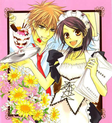http://images2.fanpop.com/images/photos/6700000/Volume-1-cover-kaichou-wa-maid-sama-6701122-456-500.jpg