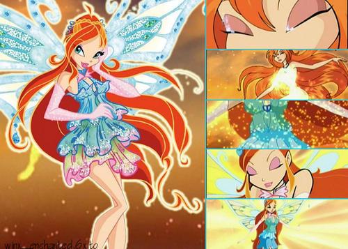 http://images2.fanpop.com/images/photos/6700000/bloom-enchantix-transformation-the-winx-club-6730598-500-357.jpg