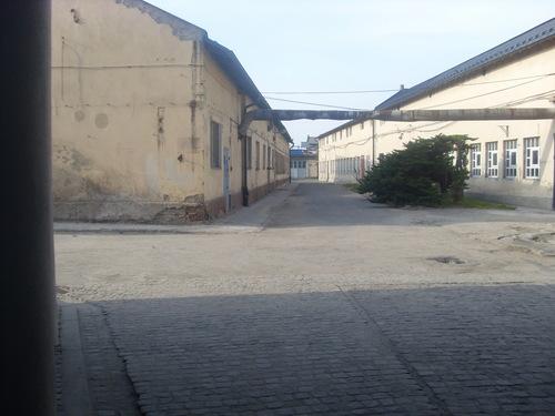 poland 2009