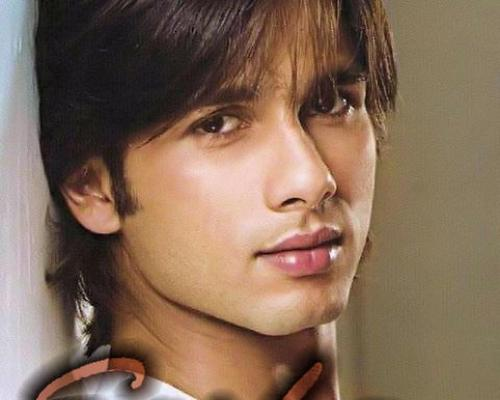 Shahid Kapoor wallpaper with a portrait titled shahid kapoor
