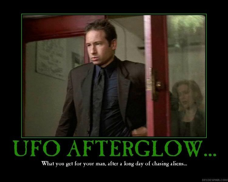 Quotes X Files Enchanting X Files Love Quotes  Dobre For