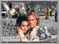 A Knight's Tale Wallpaper - a-knights-tale wallpaper