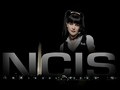 abby-sciuto - Abby wallpaper