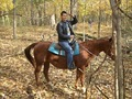 Alex Meraz(paul in new moon) horseback riding - twilight-series photo