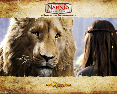 The Chronicles Of Narnia wallpaper called Aslan