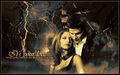 BTVS - buffy-the-vampire-slayer wallpaper
