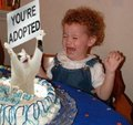 Birthday Surprise Kitty - animal-humor photo