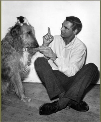Cary and His cat and dog