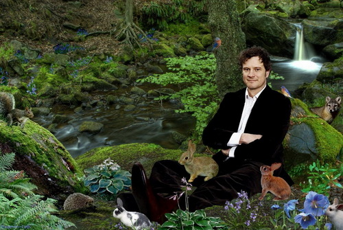 Colin Firth 壁纸