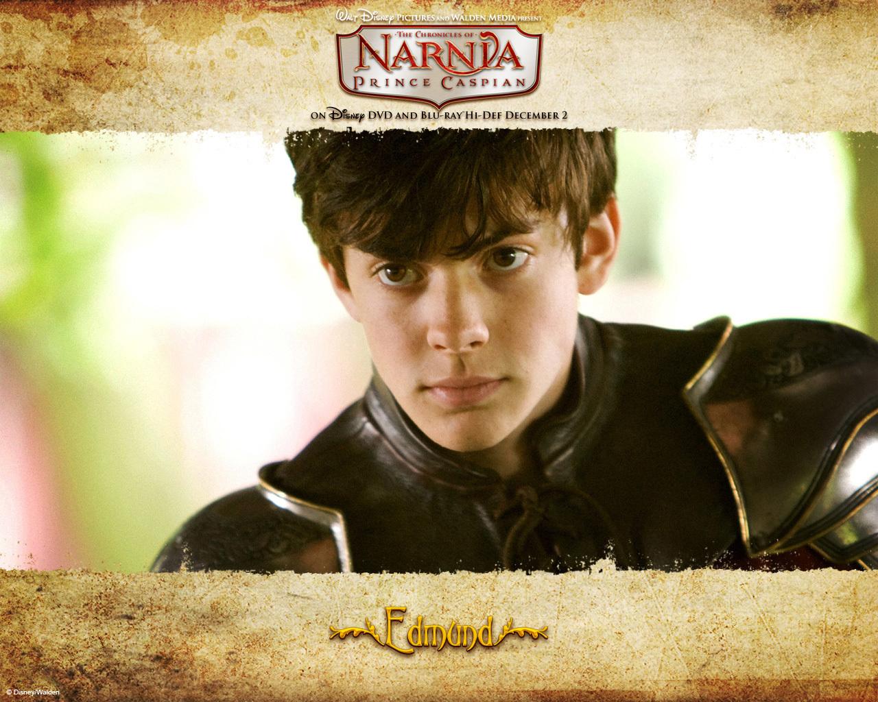 Edmund gaining maturity and becoming a leader   fanpop.com