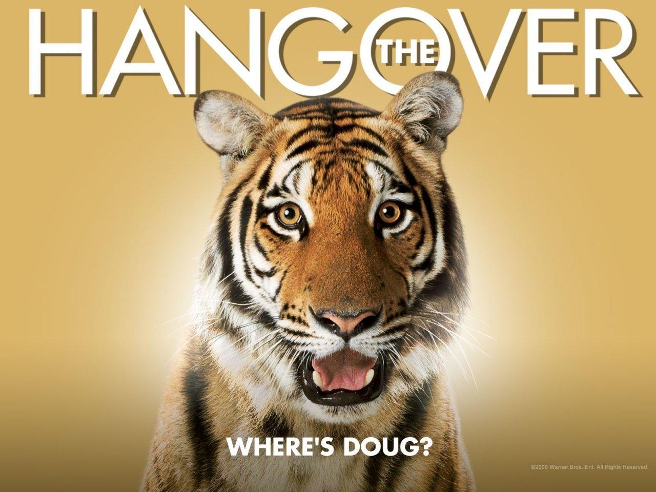 the hangover Traducción de 'hangover' en el diccionario gratuito de inglés-español y muchas otras traducciones en español.