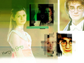 Harry/Ginny - couples-from-harry-potter wallpaper
