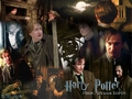 Harry Potter Wallpapers - harry-potter wallpaper